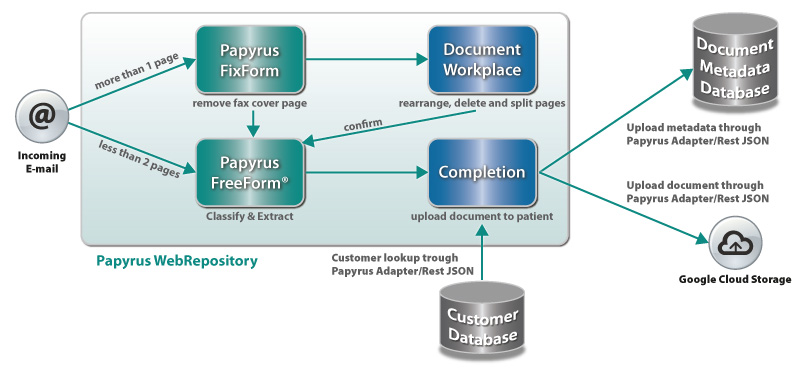 Papyrus Software - Dexcom case study