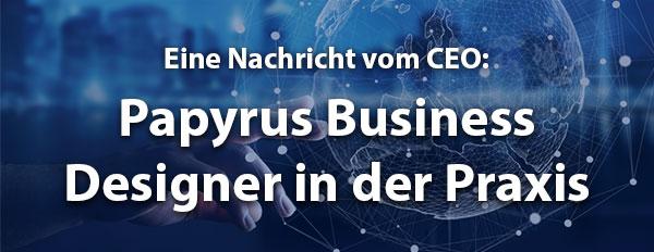 Papyrus Business Designer in der Praxis